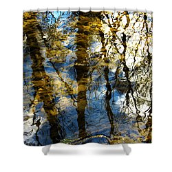 Woodland Reflections Shower Curtain by Shawna Rowe