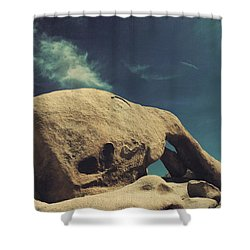 Worlds Away Shower Curtain by Laurie Search