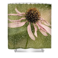 Wouldn't It Be Loverly Shower Curtain by Lois Bryan