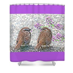 Wren Bird Sweethearts Shower Curtain by Jennie Marie Schell