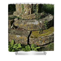Yarnton Grave Shower Curtain by Joseph Yarbrough