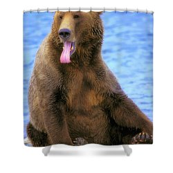 Yawning Grizzly Bear Sitting By Waters Shower Curtain by Thomas Kitchin & Victoria Hurst