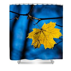 Yellow Blues - Featured 3 Shower Curtain by Alexander Senin