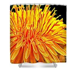 Yellow Chrysanthemum Painting Shower Curtain by Bob and Nadine Johnston