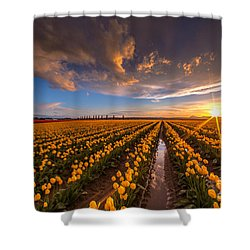 Yellow Fields And Sunset Skies Shower Curtain by Mike Reid