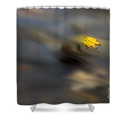 Yellow Leaf Floating In Water Shower Curtain by Dan Friend