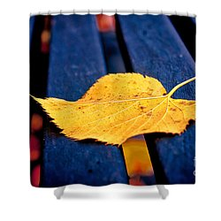 Yellow Leaf On Bench II Shower Curtain by Silvia Ganora