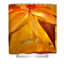 Yellow Leaves At Dawn Shower Curtain by Deb Halloran