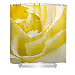 Yellow Rose Shower Curtain by Svetlana Sewell