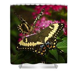 Yellow Swallowtail Butterflies  Shower Curtain by Saija  Lehtonen