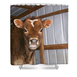 Yes I'm Talking To You Shower Curtain by Sara  Raber