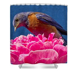 You Move And I Have My Lunch Shower Curtain by Jean Noren