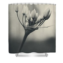 You Will Always Be Shower Curtain by Laurie Search