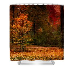 Youth Shower Curtain by Hannes Cmarits