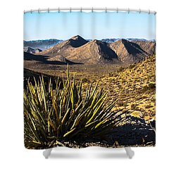 Yucca In High Deaert Shower Curtain by Robert Bales