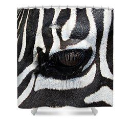 Zebra Eye Shower Curtain by Linda Sannuti