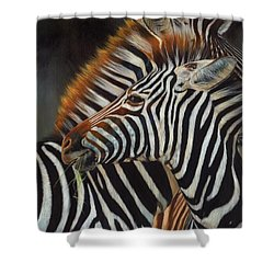 Zebras Shower Curtain by David Stribbling