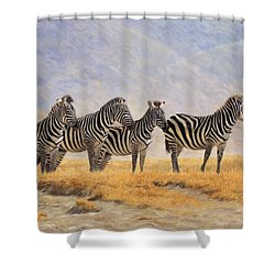 Zebras Ngorongoro Crater Shower Curtain by David Stribbling