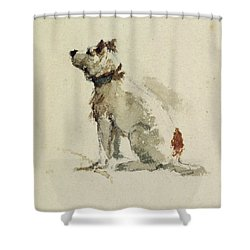 A Terrier - Sitting Facing Left Shower Curtain by Peter de Wint