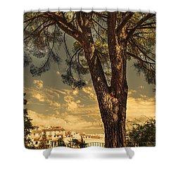 Pine Tree In The Secret Garden Shower Curtain by Jenny Rainbow