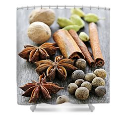 Assorted Spices Shower Curtain by Elena Elisseeva