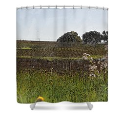 Beautiful California Vineyard Framed With Flowers Shower Curtain by Brandon Bourdages