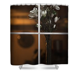 Elegance Shower Curtain by Doug Sturgess