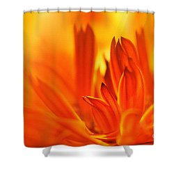 Fire Storm  Shower Curtain by Elaine Manley