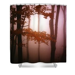 Foggy Misty Trees Shower Curtain by Mike Nellums
