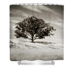 Hill Top Beauty Shower Curtain by Scott Pellegrin