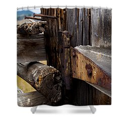 Hinged 3 Shower Curtain by Fran Riley