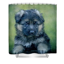 Long Coated Puppy Shower Curtain by Sandy Keeton