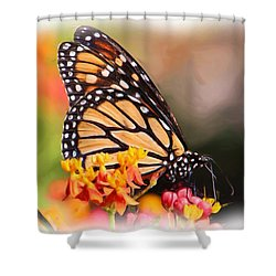 Monarch And Milkweed Shower Curtain by Heidi Smith