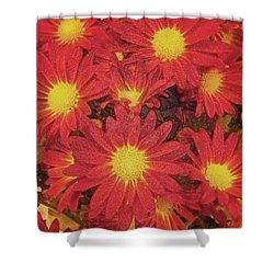Patterned Petels Shower Curtain by Debbie Portwood