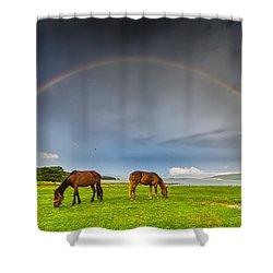 Rainbow Horses Shower Curtain by Evgeni Dinev