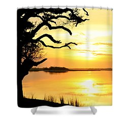 Remember When Shower Curtain by Karen Wiles