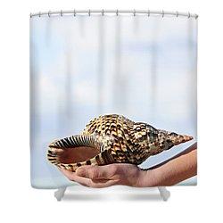 Seashell In Hand Shower Curtain by Elena Elisseeva