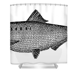 Shad Shower Curtain by Granger