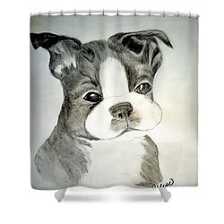 Simply Irresistable Shower Curtain by Maria Urso