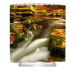 Soothing Shower Curtain by Darren Fisher