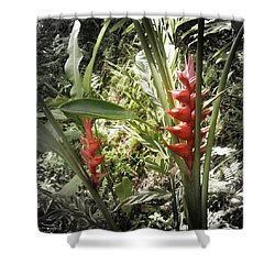 Tropical Flowers Shower Curtain by Gina De Gorna