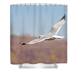 Wingspan Shower Curtain by Bill Cannon