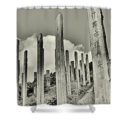 Carvings Of Buddhist Teachings Shower Curtain by Joe  Ng