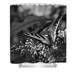 Expectation Of The Dawn Shower Curtain by Sharon Mau