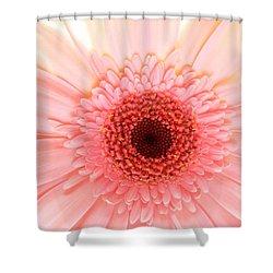 2149 Shower Curtain by Kimberlie Gerner