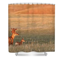 Digitally Enhanced Image With Painterly Shower Curtain by Robert Postma