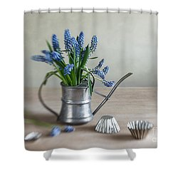 Still Life With Grape Hyacinths Shower Curtain by Nailia Schwarz