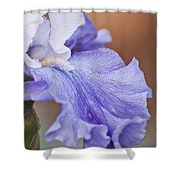 Iris Shower Curtain by Christopher Gaston