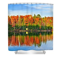 Fall Forest Reflections Shower Curtain by Elena Elisseeva