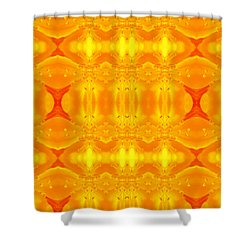 A Brighter Day Shower Curtain by Jen Sparks